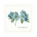 My Greenhouse Forget Me Not Prints by Lisa Audit