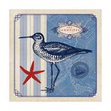 Sea Bird II Prints by  Studio Mousseau