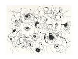Black Line Poppies Mix Prints by Shirley Novak