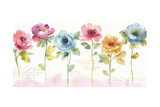 Rainbow Seeds Loose Floral V Prints by Lisa Audit