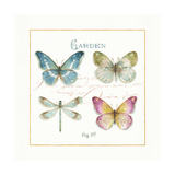 Rainbow Seeds Butterflies IV Posters by Lisa Audit