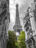 Paris my Love Giclée-Druck von Assaf Frank