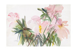 Peonies, 1987 Giclee Print by Claudia Hutchins-Puechavy
