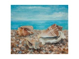 Three Shells Giclee Print by Cristiana Angelini