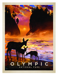 KC NP Olympic Prints by  Anderson Design Group