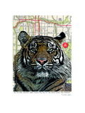 Kansas City Tiger Poster by Lyn Nance Sasser and Stephen Sasser