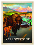 KC NP Yellowstone Bison Prints by  Anderson Design Group