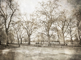 Hyde Park I Art by Golie Miamee