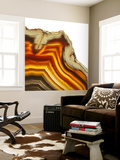 Cadmium Orange Agate A Wall Mural by GI ArtLab