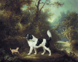 Nelson with a Terrier Giclee Print by Charles Henry Schwanfelder