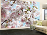 Frühling Wandgemälde