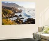 Big Sur Wave 2 Wall Mural by Paul Edmondson