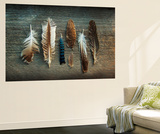 Feather Collection I Wall Mural by Sue Schlabach