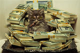 Daveed Benito- Money & Pussy Print by Daveed Benito