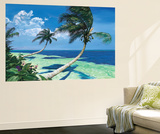 Beckoning Palms Wall Mural by Scott Westmoreland