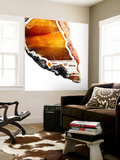 Blood Orange Agate A Wall Mural by GI ArtLab