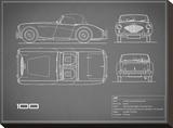Austin-Healey 100-Grey Stretched Canvas Print by Mark Rogan