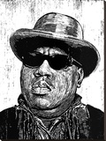 Biggie Stretched Canvas Print by Neil Shigley