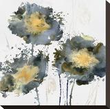 Flower Burst Trio Stretched Canvas Print by Vanessa Austin