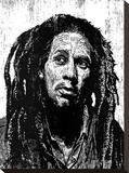 Marley Stretched Canvas Print by Neil Shigley