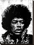 Hendrix Stretched Canvas Print by Neil Shigley