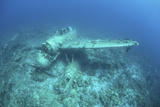 A Japanese Jake Seaplane on the Seafloor of Palau's Lagoon Photographic Print by  Stocktrek Images