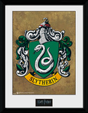 Harry Potter Slytherin Collector-tryk