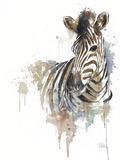 Water Zebra Kunstdruck von Patricia Pinto