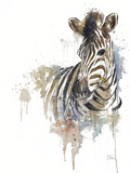 Water Zebra Prints by Patricia Pinto