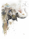 Water Elephant Prints by Patricia Pinto