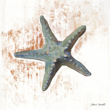 Starfish on White I Print by Lanie Loreth