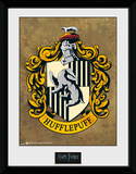 Harry Potter Hufflepuff Collector Print