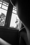 Windows Photo by Neave Bozorgi