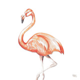 Flamingo Duo Square II Prints by Tiffany Hakimipour