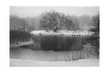 Prospect Park Snow, Upper Pool Photographic Print by Henri Silberman