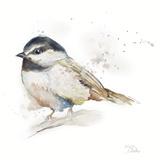 Watercolor Mountain Bird II Poster par Patricia Pinto