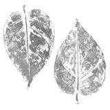 Silver Otono II (silver foil) Art by Patricia Pinto