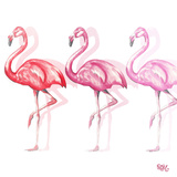 Flamingo Trio II Prints by Tiffany Hakimipour