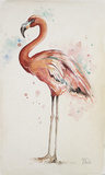 Flamingo I Poster by Patricia Pinto