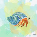 Watercolor Sea Creatures II Prints by Julie DeRice