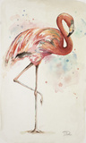 Flamingo II Poster by Patricia Pinto