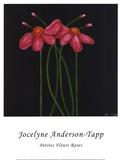 Petite Rose Prints by Jocelyne Anderson-Tapp