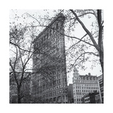 Flatiron Side View Trees Photographic Print by Henri Silberman
