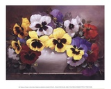 Rainbow of Pansies Print by Victor Santos