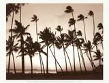 Platinum Palms I Prints by Michael Neubauer