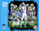 Carolina Panthers 2016 Team Composite Photo