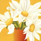 Sunny Daisies Poster by Sarah Horsfall