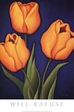 Tulips Posters by Will Rafuse