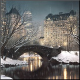 Schemering in Central Park Kunst op hout van Rod Chase