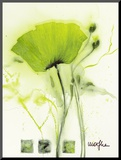 Coquelicot Vert I Mounted Print by  Marthe